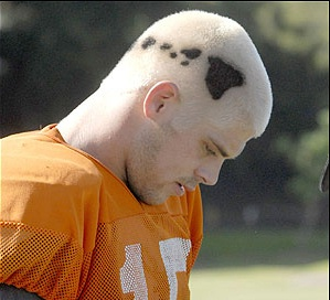 Colt-Hair