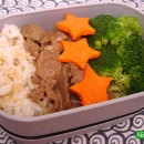 Beef Broccoli & Party Leftovers (154 & 155)