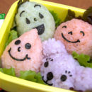 Onigiri for Ochazuke Bento