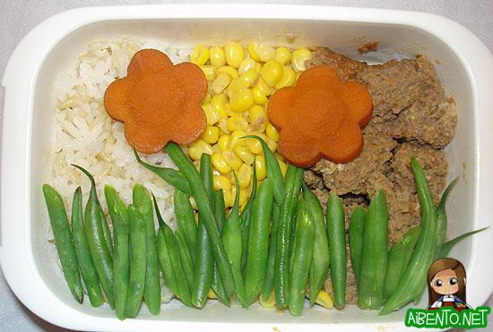 070501-Meat-Loaf-Garden-Bento